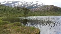 "Image: A ""løk"" - a tiny lake - in the mountains."