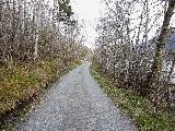 Image: Me and mom took Nicoline and Philip for a walk. This is the old road to Vik.